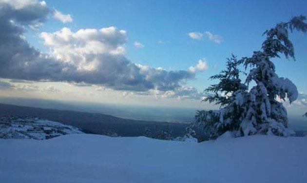 miziara-snow-'